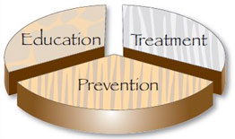 We believe in a 3-step approach to wellness: Education, Treatment and Prevention